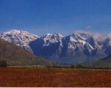 Western Cape Attractions: Breede River Valley, Rawsonville