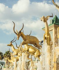 Gold Reef City Theme Park, Casino and Entertainment